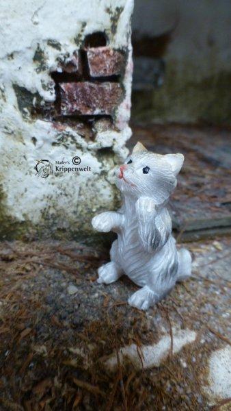 Kätzchen als Polystone - Zusatzfigur