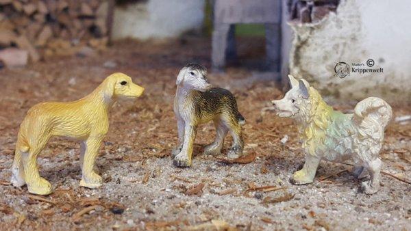 drei kleine süüße Hunde als Krippentiere
