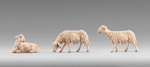 Schafe als Krippenfiguren - Tiere  passend für die Heide Krippen