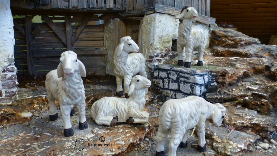Krippenfiguren aus Polystone - Schafe