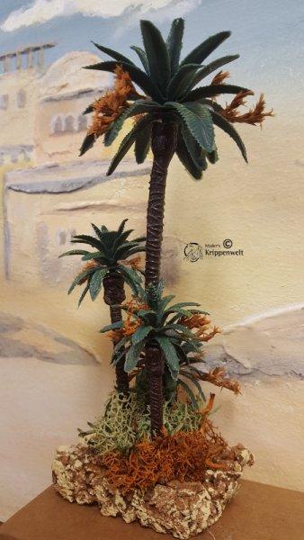 Palmen als Krippenbotanik für orientalische Weihnachtskrippen